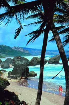 barbados-cruises-beach.jpg