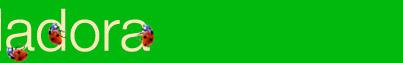Vuela vuela mariquita