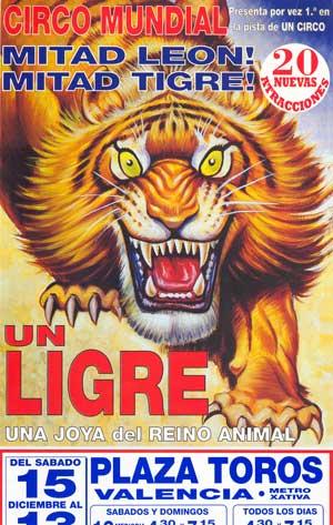 Despierta el Ligre que hay en tí