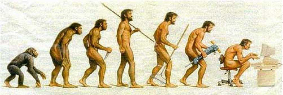 Imagenes de la diferentes evoluciones