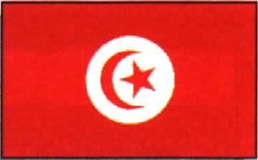 Tunísia, a tomar por culo